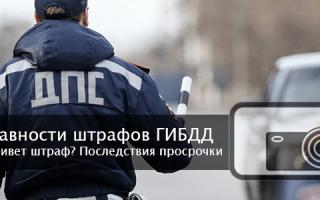 Срок годности штрафов ГИБДД