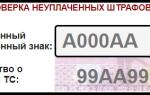 Как проверить штрафы по номеру автомобиля